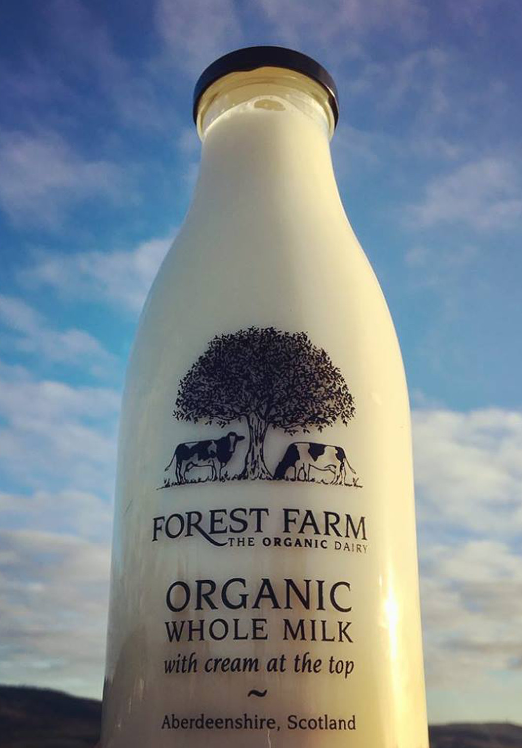 The Organic Dairy